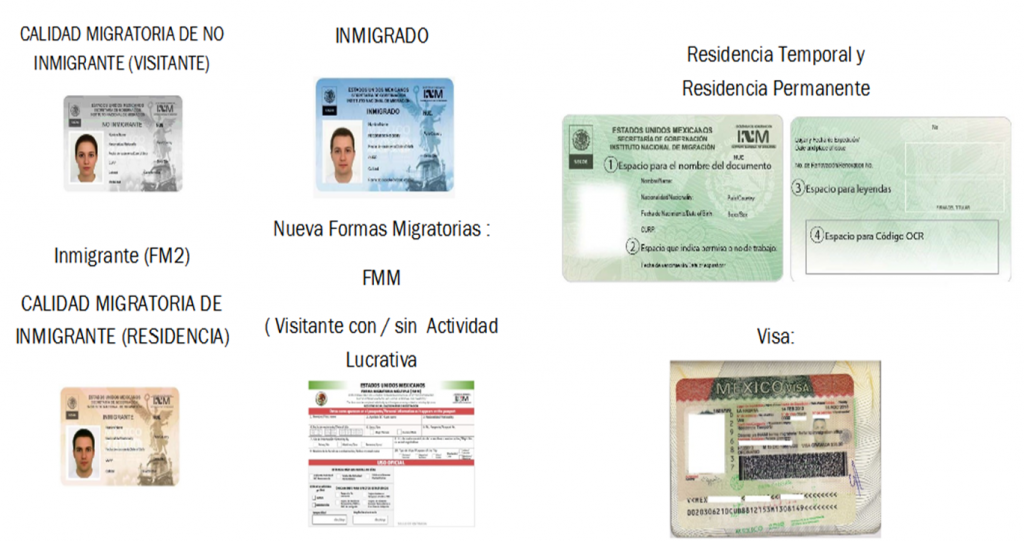 documentos migratorios curp