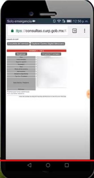 Imprimir curp pdf celular