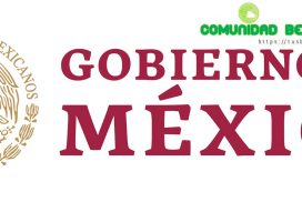 curp y becas en mexico