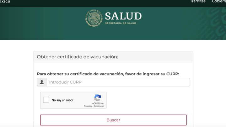 portal web certificado vacuna